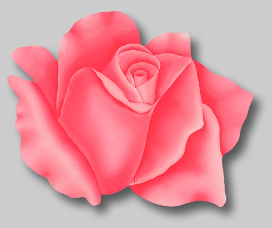 Roses in Paintings: Rosellina